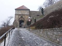 Weg zur Burg