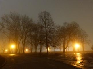 Burgpark bei Nacht und Nebel