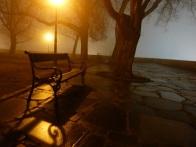 Bank im Burgpark bei Nebelstimmung