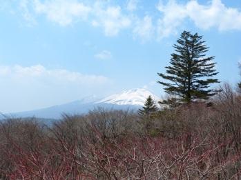 Blick auf den Asama vom Usui-Paß aus