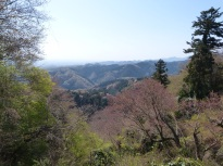 Frühling auf dem Takao