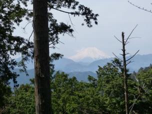 Vom Gipfel des Takao bietet sich ein toller Blick auf den Fuji